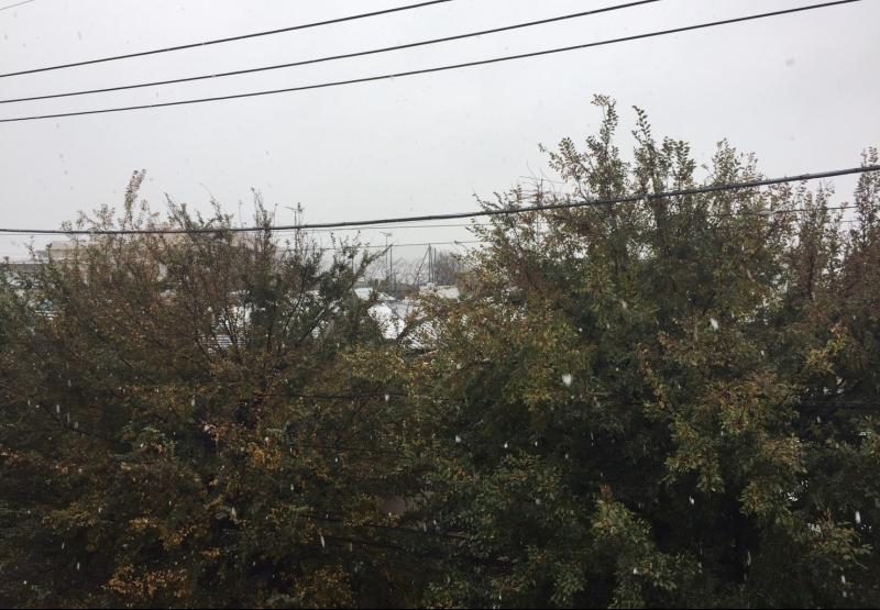 横浜の初雪_2016年11月_02